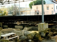 Villa dei Bovii (1)